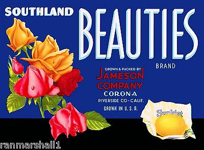 SOUTHLAND BEAUTIES~ROSE FLOWERS~1940s CORONA CALIFORNIA ORANGE FRUIT CRATE LABEL