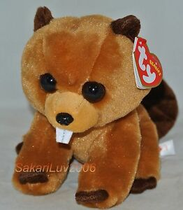 New-2017-Release-Ty-Beanie-Baby-RICHIE-the-Beaver-6-034-size-nwt-039-s