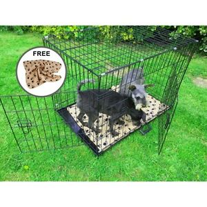 AVC-Extra-Large-42-034-Metal-Pet-Dog-Cat-Transport-Training-Cage-inc-FREE-Bed