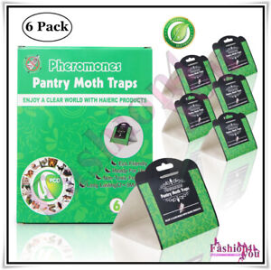 Pantry-Moth-Traps-Food-Kitchen-Moth-Killer-Natural-Safe-Odourless-Trap-6-Pack