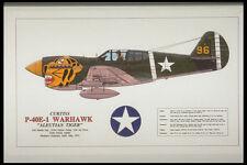 419042 Curtiss P 40E 1 Warhawk Aleutian Tiger A4 Photo Print