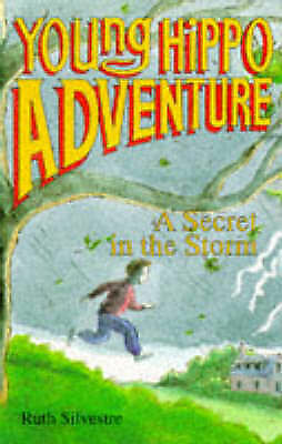 """1 of 1 - """"VERY GOOD"""" The Secret in the Storm (Young Hippo Adventure), Silvestre, Ruth, Bo"""