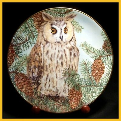 Royal Kendal - British Owls Collection - The Long Earred Owl