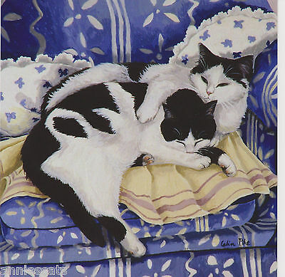 2 Black & White Cats Curled Together Greetings Card From Celia Pike Painting 014