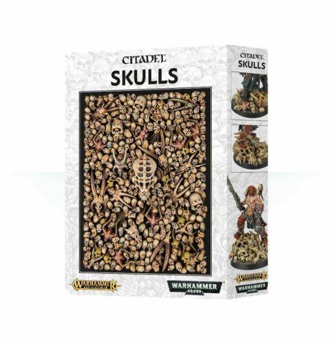Citadel Skulls Games Workshop Skull 340 Schädel Totenköpfe Knochen 64-29