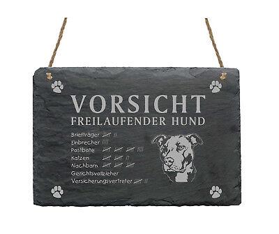 Ausdrucksvoll Schiefertafel « Pitbull - Vorsicht - Freilaufender Hund » Schild Pit Bull Garten Kaufe Jetzt