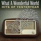 Various - What A Wonderful World The Hits Of