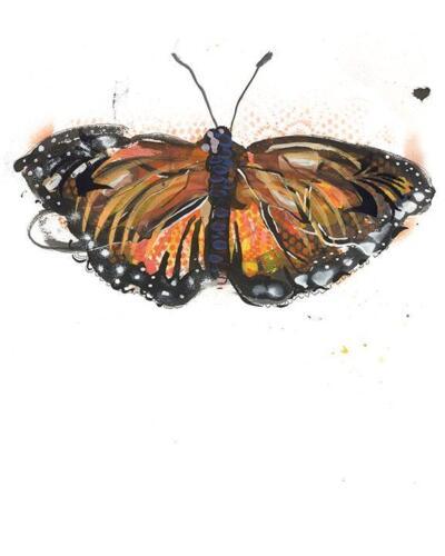 Monarch Artwork Print