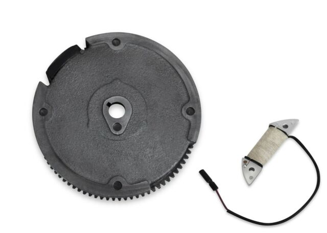 GX160 GX200 5 5HP 6 5HP Flywheel Ring Gear With Magnets Charging Coil For  Honda