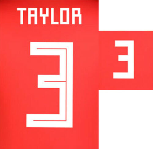 TAYLOR 3 2018 WHITE NAME BLOCK FOR WALES HOME = ADULT SIZE