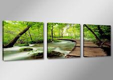 Cuadros en Lienzo + 150 x 50 cm Nr. 4216 naturaleza
