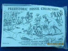 FOSSIL SET 12 KINDS, TRILOBITE,BRACHIOPOD DINOSAUR BONE