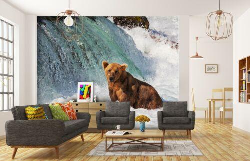 VLIES FOTOTAPETE Bär Alaska Tiere Fluss Fischen Tapete XXL Vliestapete