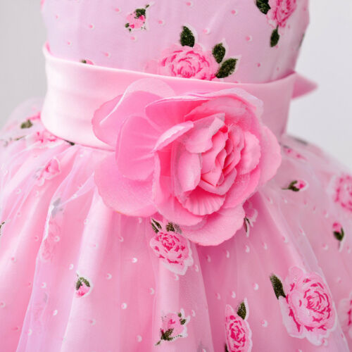 Pageant Toddler Girls Party Fancy Princess Gown Bridesmaid Birthday Formal Dress