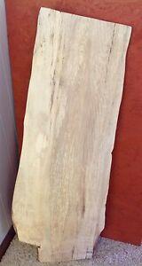 SPALTED ASH RUSTIC LIVE NATURAL EDGE SLAB HOBBY CRAFT DIY WOOD LUMBER DECOR #115