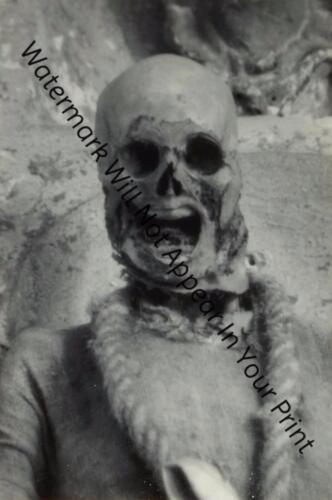SCARY FREAKY ODD STRANGE Dead Man Mummy Spooky BIZARRE VINTAGE PHOTO WEIRD A25