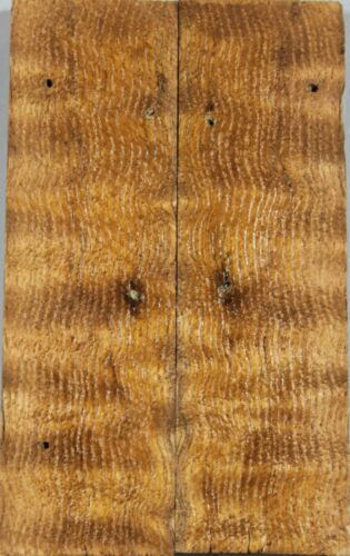 "Ripple Cyclobalanopsis myrsinifoli Wood scales//Pistol Grips 5.1/""x3.1/""x0.45/"""