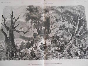 Gravure-1874-Caucase-Route-militaire-par-les-Russes-Foret-du-Lesguinstan
