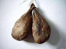 Castoreum Glands 148 grams 100% naturale from Siberia Russia Without prescriptio