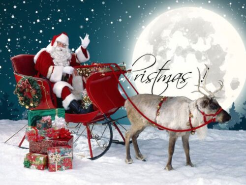 Vestito Costume Babbo Natale Deluxe Cosplay Santa Claus Christmas Suit SANTC03