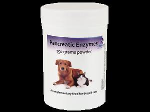 Poudre enzymatique pancréatique pour aider la digestion chez les chiens et les chats atteints d'épi