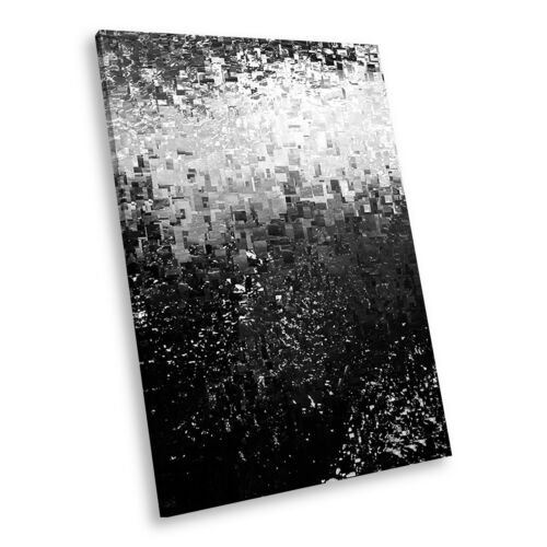 AB1772 Black White Abstract Portrait Canvas Picture Print Large Wall Art Modern