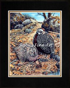 Matted-Montezuma-Quail-Print-034-Quail-Trail-034-Giclee-11x14-Mat-Artist-by-Roby-Baer