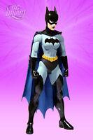 Superman / Batman Ser 4 Batwoman 6in Figure Dc Direct Toys 2007 on sale
