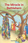 The Miracle in Bethlehem: A Storyteller's Tale by Sarah Burton (Paperback, 2008)