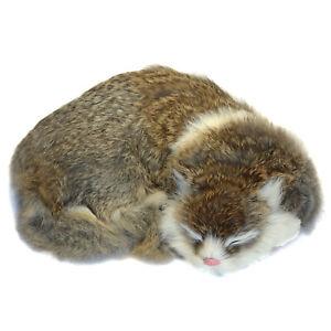 Realistic-Cat-Lifelike-Kitten-Plush-Soft-Furry-Fur-Animal-Sleeping-Synthetic-Pet
