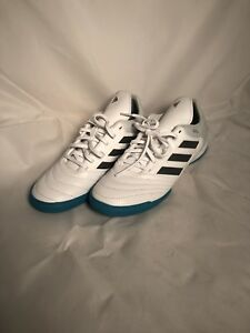 193ba87dc06 Adidas Performance Mens Copa Tango 17.3 in White Onix Clear Grey ...