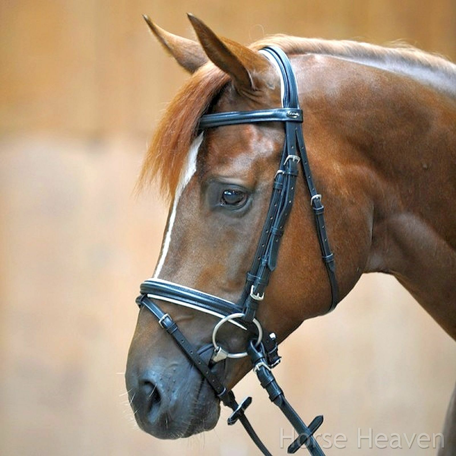 Kavalkade Quentin Flash Snaffle Bridle Soft Padded Comfort Headpiece  Incl Reins  10 days return