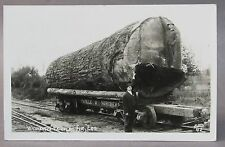 1940's WASHINGTON DOUGLAS FIR Train Flat Car Ellis #42 RPPC real photo postcard