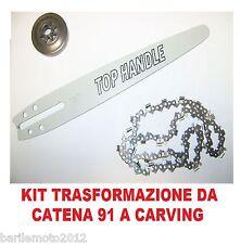Barra + Catena + Pignone Traformazione Motosega Cinese / PRC 25cc