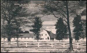 COLLEGE-PARK-MD-University-of-Maryland-Animal-Dairy-Husbandry-Barns-Vtg-Postcard