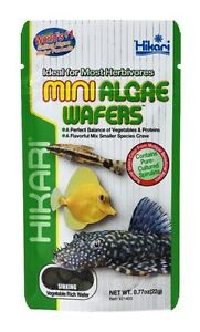 Hikari-Mini-Algae-Wafers-77oz-to-2-2-Want-It-For-Less-LOOK-INSIDE-AND-SAVE