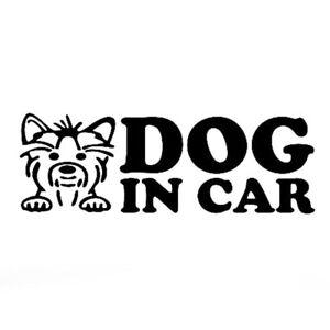 Adesivo-sticker-vinile-DOG-IN-CAR-auto-automobile-sicurezza-cane-macchina-NERO