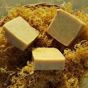 Gold-Sea-Moss-Soap-Handmade-Vegan-With-Wildcrafted-Jamaican-Gold-Sea-Moss