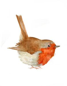 Robin-Original-Watercolour-painting-Limited-Edition-A5-Bird-Wildlife-Print