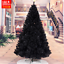 UPS-3-Days-3-4-5-6-7-8-ft-Black-Artificial-Christmas-Tree-Indoor-Home-Decoration thumbnail 19