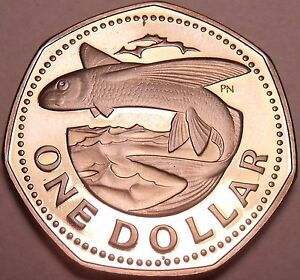 Central America Methodical Large Barbados Proof 1973 Dollar~flying Fish~seven Sided Coin