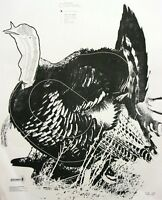 Ay-69 [ay69] Wild Turkey Target With Vitals [17-1/2 X 23] (50 Pack)
