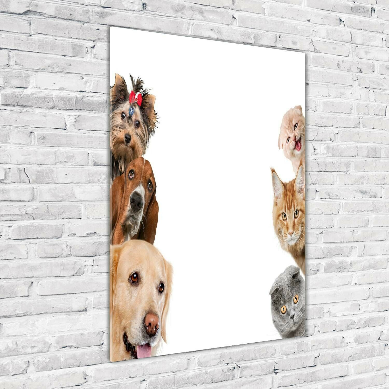 Wand-Bild Kunstdruck aus Acryl-Glas Hochformat 70x100 Hunde Katzen