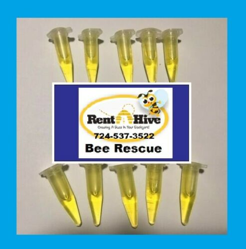 RENT A HIVE BEE RESCUE Honey Bee Swarm Lure Made by Professional Swarm Catchers