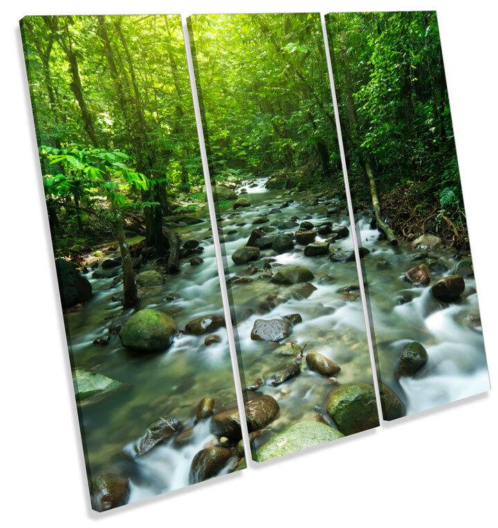 Tropical Tropical Tropical Mountain Stream Landscape TREBLE CANVAS WALL ART Square Print Picture f4ebb6