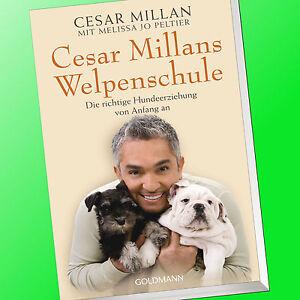CESAR-MILLAN-CESAR-MILLANS-WELPENSCHULE-Hundeerziehung-Hundefluesterer-Buch