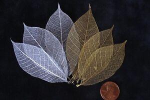 40-Skeleton-Leaves-Silver-Gold-Metallic-see-through-leaf-Wedding-Christmas-med