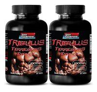 Tribulus 100 - Tribulus Terrestris 1000mg - Male Sexual Stimulant Pills 2b 120t