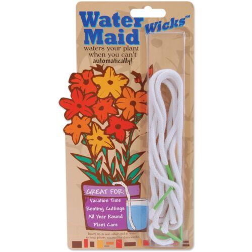 Agua Maid Mechas 5//Pkg Blanco