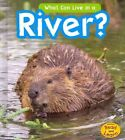 What Can Live in the River? by John-Paul Wilkins (Hardback, 2014)